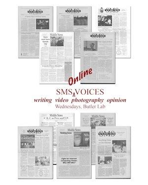 voices online