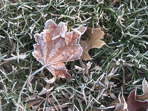 Frost underfoot